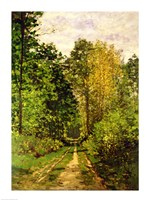Wooded Path, 1865 Framed Print