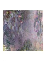 Light-coloured Waterlilies-25, 1917 by Claude Monet, 1917 - various sizes