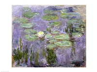 Waterlilies, 1915 Fine Art Print