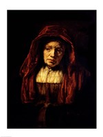 Portrait of an Old Woman Fine Art Print