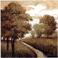Woodland Exposure II Fine Art Print