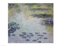Waterlilies detail, 1906 by Claude Monet, 1906 - various sizes, FulcrumGallery.com brand