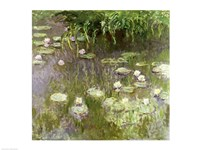 Waterlilies at Midday, 1918 Fine Art Print