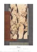 Gladioli 1 Fine Art Print