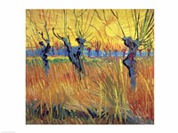 Pollarded Willows and Setting Sun, 1888 Fine Art Print
