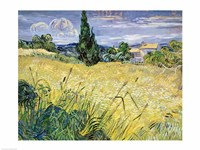 Landscape with Green Corn, 1889 Fine Art Print