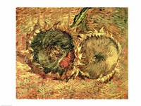 Two Cut Sunflowers, 1887 Fine Art Print