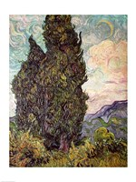 Cypresses, 1889 by Vincent Van Gogh, 1889 - various sizes