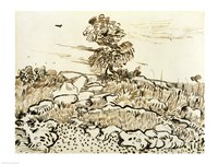 Rocky Ground at Montmajour by Vincent Van Gogh - various sizes
