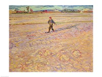 The Sower, 1888 by Vincent Van Gogh, 1888 - various sizes