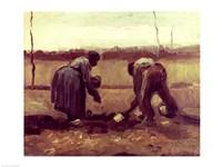 Two Peasants Planting Potatoes, 1885 Fine Art Print