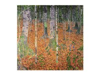 The Birch Wood, 1903 Fine Art Print