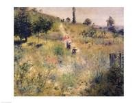 The Path through the Long Grass Fine Art Print