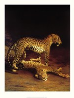 Two Leopards Playing in the Exeter Change Menagerie Fine Art Print