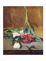 Stem of Peonies and Secateurs, 1864 by Edouard Manet, 1864 - various sizes, FulcrumGallery.com brand