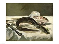 Eel and Red Mullet, 1864 by Edouard Manet, 1864 - various sizes, FulcrumGallery.com brand