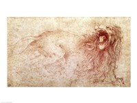 Sketch of a roaring lion Fine Art Print