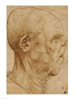 Caricature of the head of an old man, in profile to the right, 1507 by Leonardo Da Vinci, 1507 - various sizes