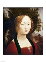 Ginevra de' Benci Fine Art Print