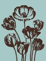 """Tulip 18 - 12"""" x 16"""""""