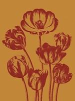 """Tulip 15 - 12"""" x 16"""" - $12.99"""