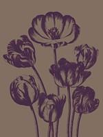 """Tulip 14 - 12"""" x 16"""" - $12.99"""