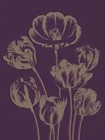 """Tulip 13 - 12"""" x 16"""" - $12.99"""
