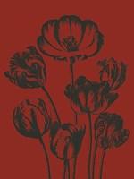 """Tulip 9 - 18"""" x 24"""""""