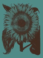 "Sunflower 5 - 12"" x 16"""