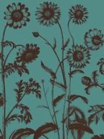 "Chrysanthemum 5 - 12"" x 16"""