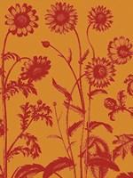 "Chrysanthemum 15 - 12"" x 16"""