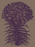 "Lilies 14 - 12"" x 16"", FulcrumGallery.com brand"