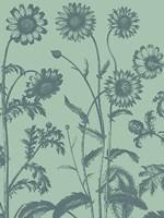 "Chrysanthemum 8 - 18"" x 24"", FulcrumGallery.com brand"