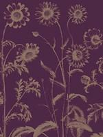 "Chrysanthemum 13 - 18"" x 24"""