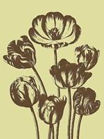 """Tulip 3 - 18"""" x 24"""""""