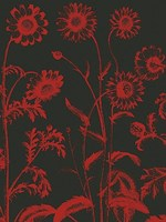 "Chrysanthemum 10 - 24"" x 32"""