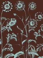 "Chrysanthemum 17 - 24"" x 32"""