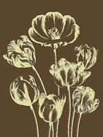 """Tulip 4 - 24"""" x 32"""""""