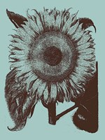 "Sunflower 18 - 30"" x 40"", FulcrumGallery.com brand"