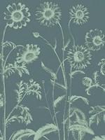 "Chrysanthemum 7 - 30"" x 40"", FulcrumGallery.com brand"