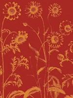 "Chrysanthemum 16 - 30"" x 40"", FulcrumGallery.com brand"