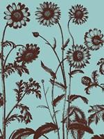 "Chrysanthemum 18 - 30"" x 40"", FulcrumGallery.com brand"