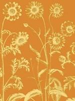 "Chrysanthemum 20 - 30"" x 40"", FulcrumGallery.com brand"