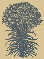 """Lilies 1 - 30"""" x 40"""""""