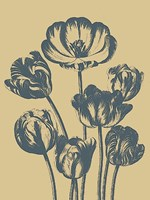 """Tulip 1 - 30"""" x 40"""" - $80.99"""