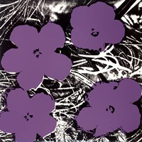 Flowers, c.1965 (4 purple) Fine Art Print