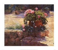 "Majorcan Patio Pot by Jackie Simmonds - 28"" x 24"""