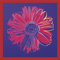 "Daisy (blue & red), 1982 by Andy Warhol, 1982 - 12"" x 12"""