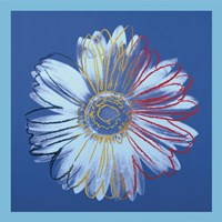 "Daisy (blue on blue), 1982 by Andy Warhol, 1982 - 12"" x 12"""