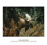 """Calm Before the Challenge by Carl Brenders - 50"""" x 48"""", FulcrumGallery.com brand"""